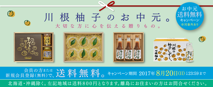 2017お中元/送料無料 一部地域除く