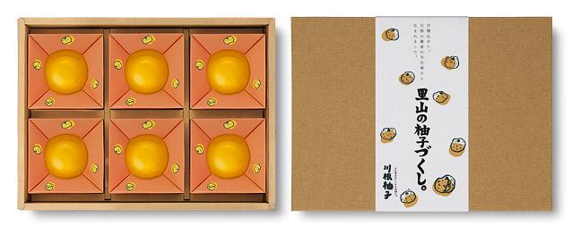 「ゆずたっぷり柚子ようかん」6個セット